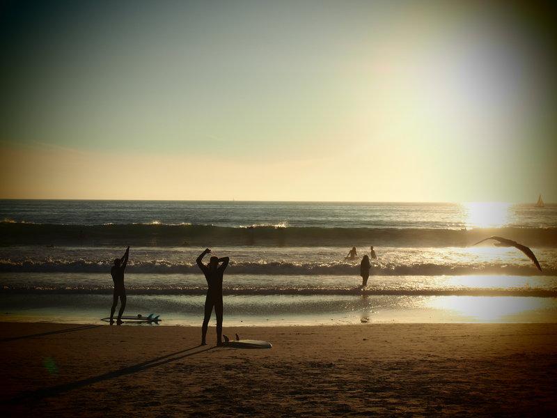 Surfers Venice Beach