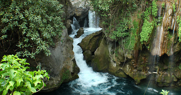 One of the waterfalls at Las Pozas Mexico