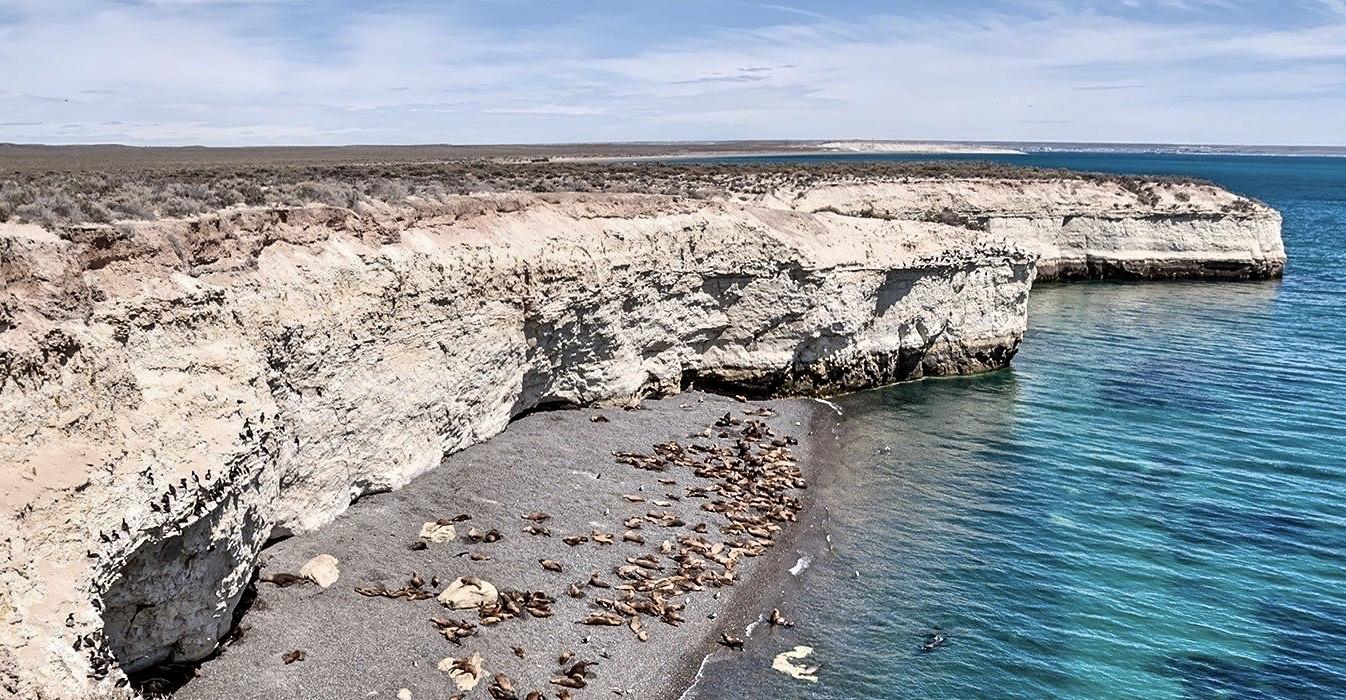 puerto-madryn-beach-argentina