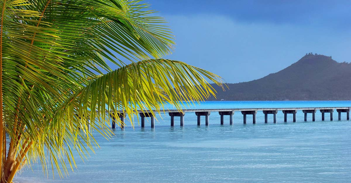 A bridge in Bora Bora with a palm tree in the foreground