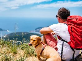 Man traveling with his dog looking at the sea from a mountain