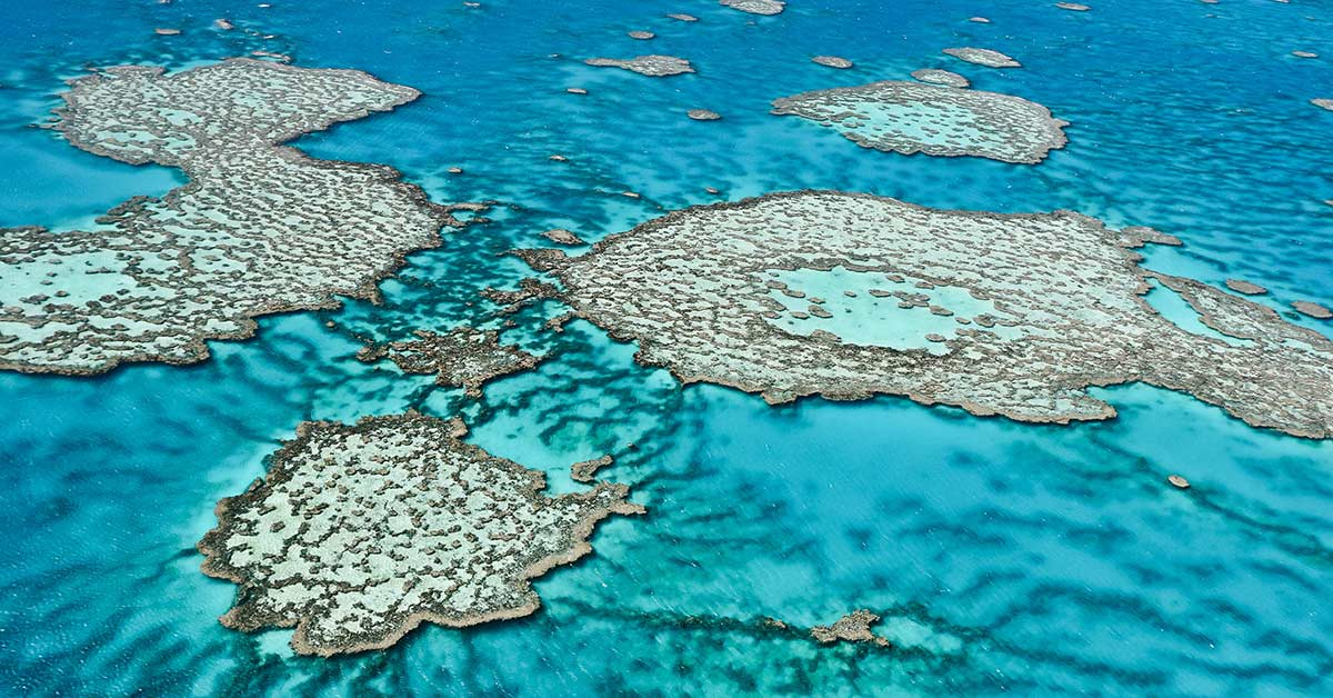Aerial view of the Great Barrier Reef in Queensland, Australia