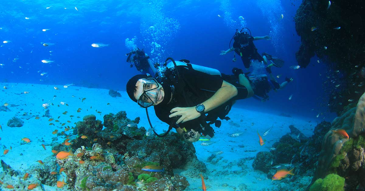 Scuba diving tour on the Great Barrier Reef in Queensland, Australia