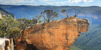 View of the Blue Mountains along a hiking trail in Australia