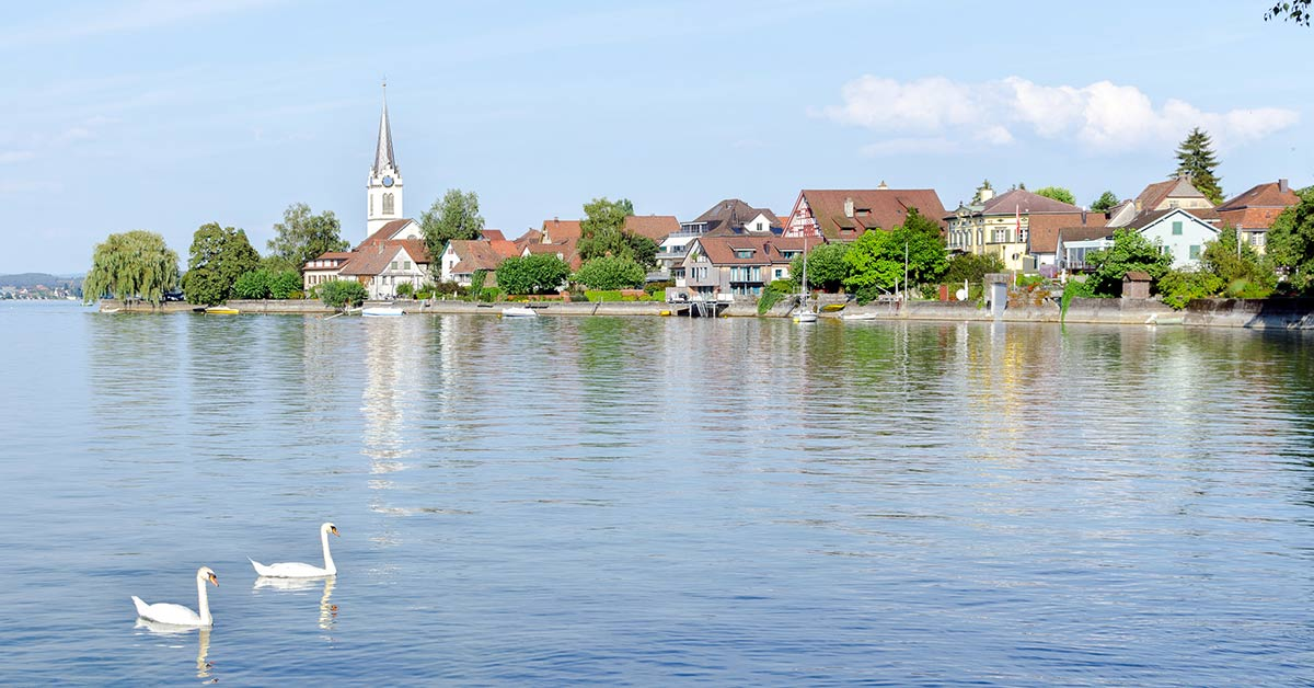 A town on Lake Constance, Switzerland with swans in the foreground