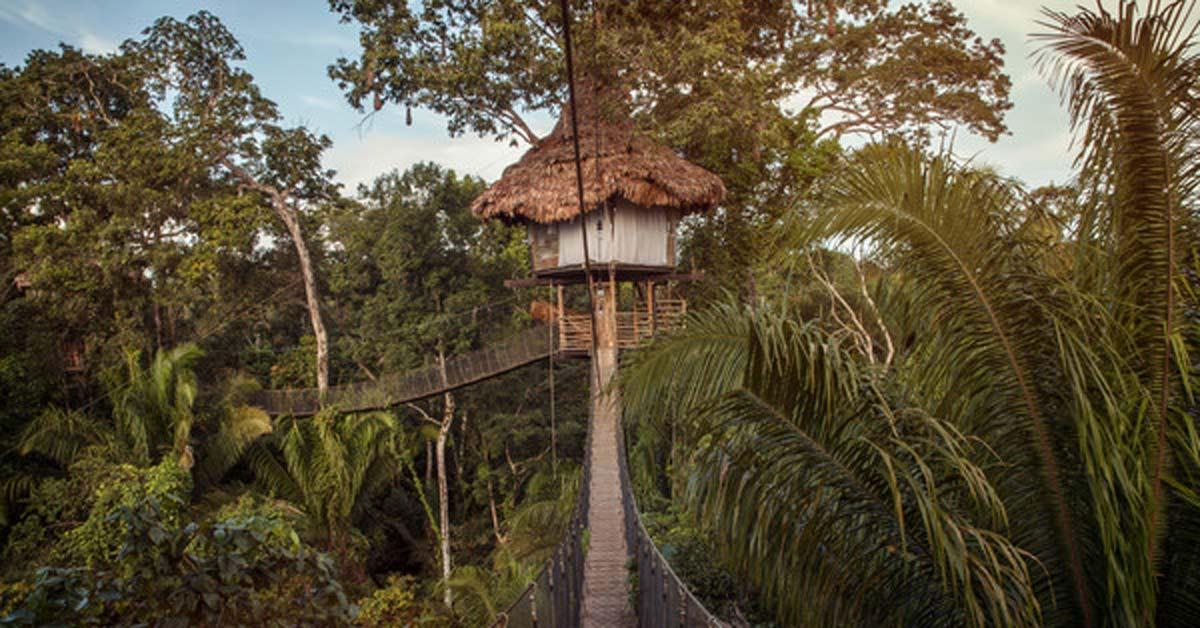 A bridge leading to a hut in the Peruvian Amazon