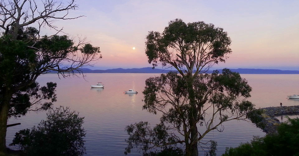 a view of a lake in Australia at sunset with trees in the foreground. www.aTRAVELthing.com