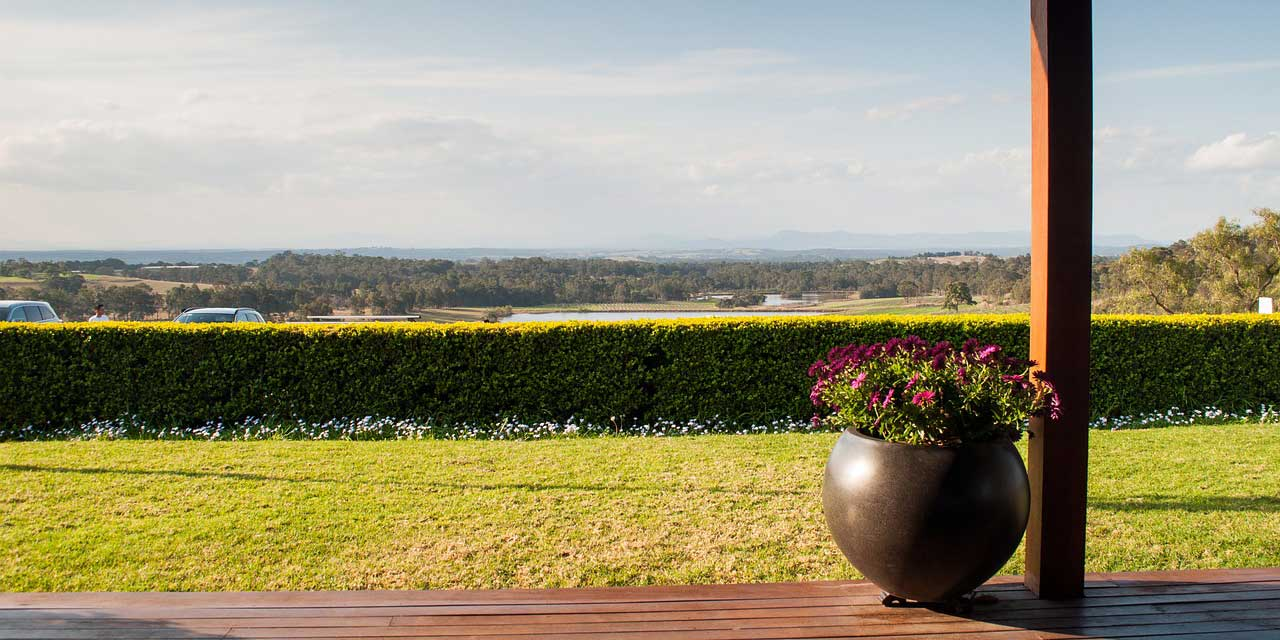 Looking out across Hunter Valley. One of Australia's best wine regions