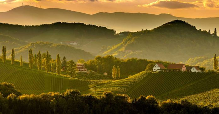 South styria vineyards landscape, near Gamlitz, Austria, Eckberg, Europe. Grape hills view from wine road in spring.